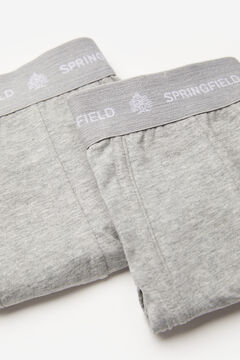 Springfield 2-pack essential briefs gray