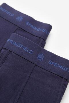 Springfield 2-pack essential briefs blue