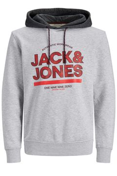 Springfield Hoodie with central logo grey