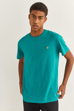 Springfield Basic logo t-shirt blue