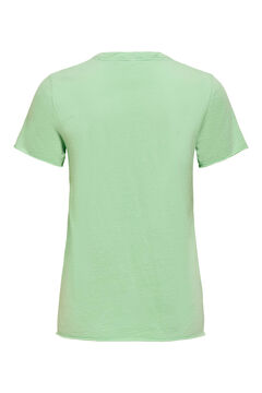 Springfield Printed short-sleeved t-shirt vert