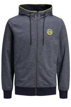 Springfield Hoodie with zip gray