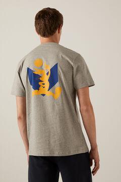 Springfield Looney Tunes T-shirt gray