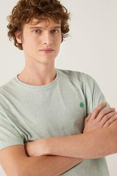 Springfield T-shirt microriscas verde