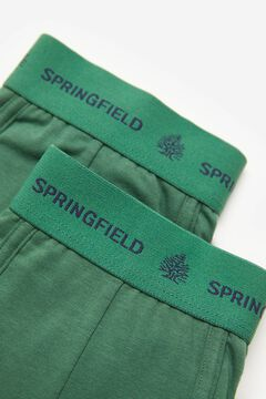 Springfield 2-pack essential briefs green