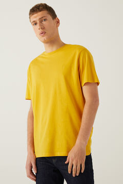 Springfield Basic logo t-shirt color