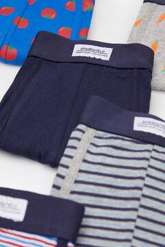Springfield Pack 5 boxers vegetais azulado
