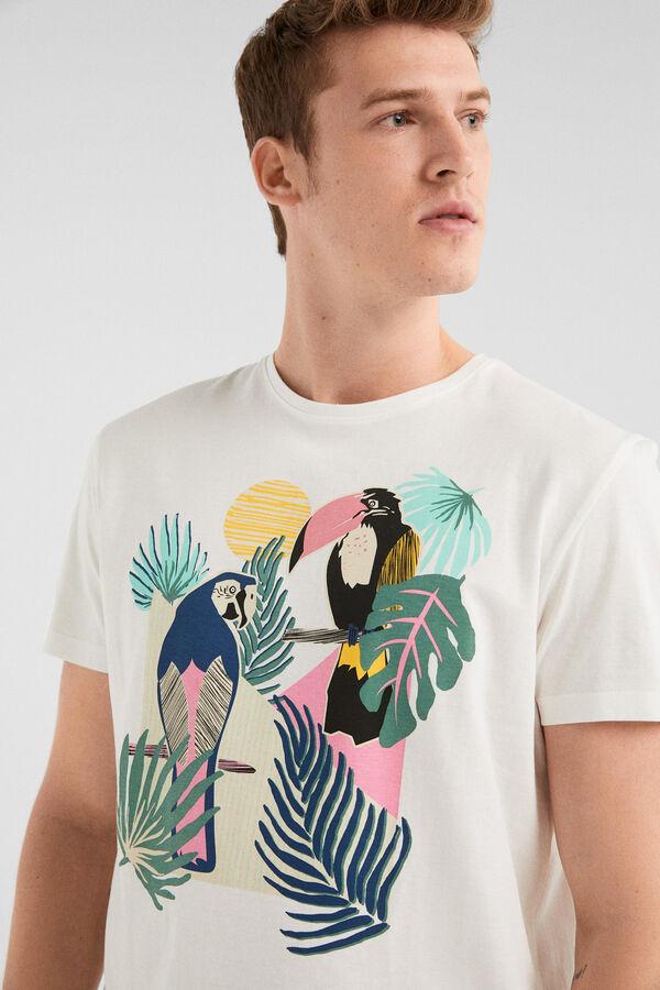 3c9cf04fc Springfield T-shirt manga curta fruta cru