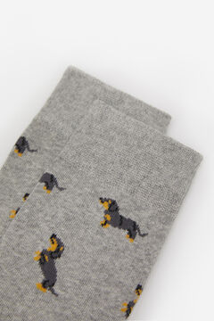 Springfield DOG SOCKS gray