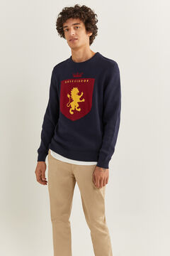 Springfield HARRY POTTER JUMPER blue