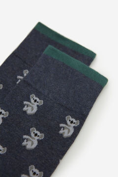 Springfield Koala socks blue