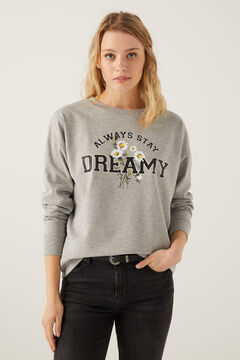 Springfield Sweat-shirt « Dreamy » gris