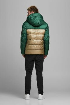 Springfield Padded jacket with hood vert