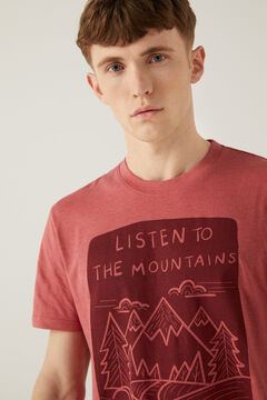 Springfield Mountain t-shirt purple