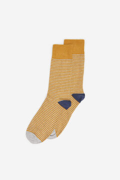 Springfield STRIPED SOCKS color