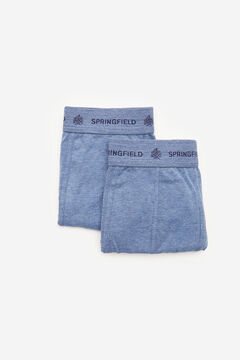 Springfield 2-pack essential briefs blue