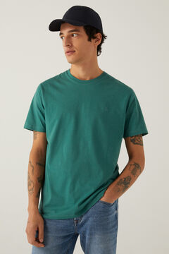 Springfield Basic logo t-shirt green