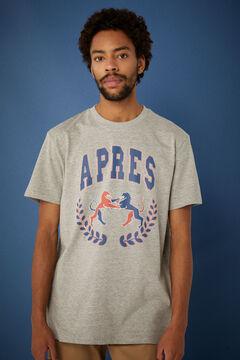 Springfield Varsity t-shirt gray