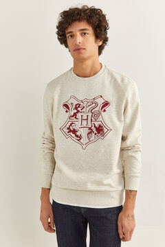 Springfield Hogwarts Sweatshirt grey mix