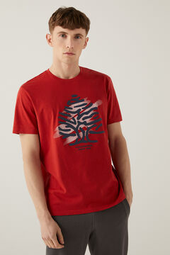 Springfield Logo t-shirt royal red