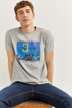 Springfield NATIONAL GEOGRAPHIC T-SHIRT grey