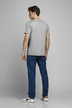 Springfield Sustainable t-shirt with bands gray
