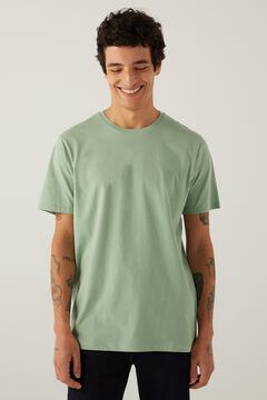 Springfield Basic logo t-shirt green