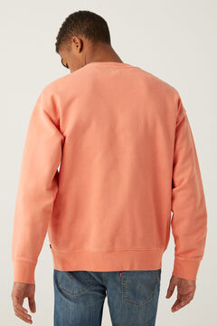 Springfield RELAXED T2 GRAPHIC CREW terracotta