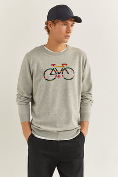 Springfield Bike jumper gray